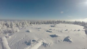 A beautiful winter day.